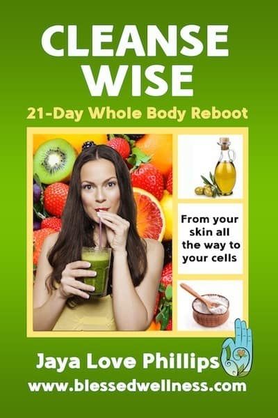 Cleanse Wise book cover4web